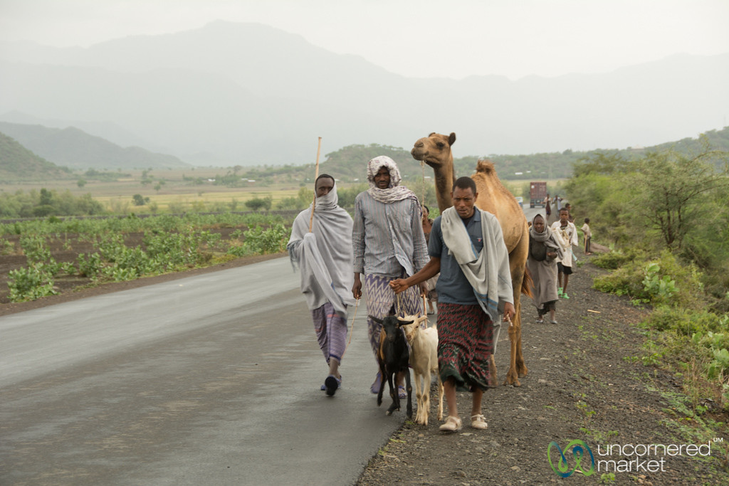 Ethiopian Road Scenes, Camels and All