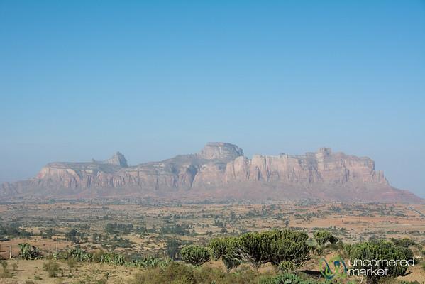 Red Rocks and Cactus in Hawzia - Tigray, Ethiopia