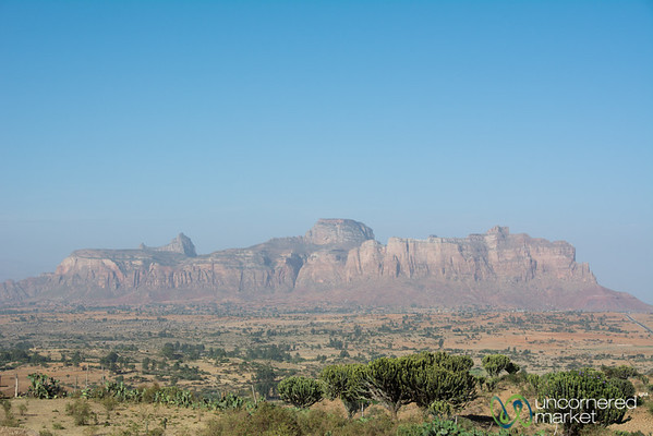 Red Rocks and Cactus in Hawzia - Tigray, Ethiopia