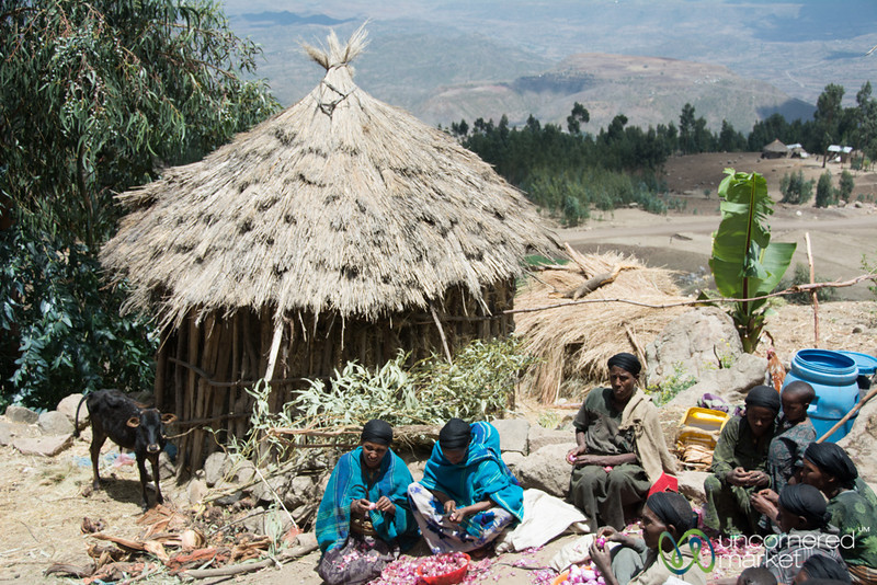 Cutting Onions for Ethiopian Stews - Lalibela, Ethiopia