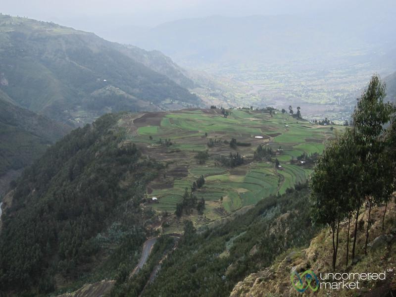 Green Fields on Way from Lalibela to Mekele - Ethiopia