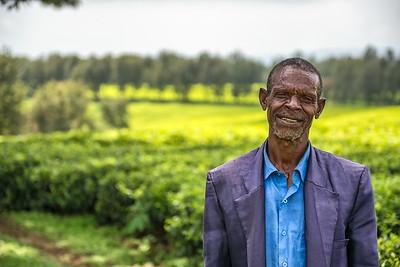 Ethiopian farmer on a tea plantation near Jimma, Ethiopia