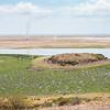 dust devils - Amboseli NP, Kenya