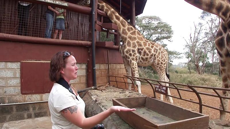 Feeding a giraffe is amazing & gross.