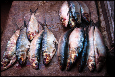 Soma market