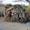 The Hadzabe live completely in the open, day and night, most of the year. During the rainy season, they use simple structures like this one to provide some shelter. Lake Eyasi, Tanzania