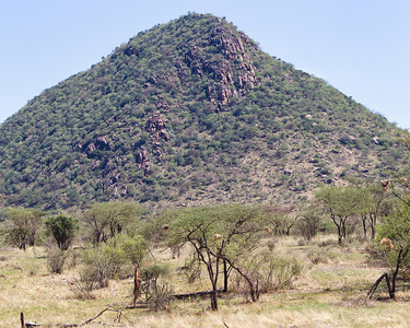 Pyramid Peak is one of the prominent local landmarks, here with a gerunuk in the foreground