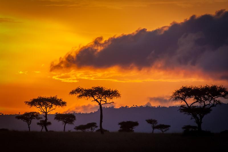 Masi_Mara_Kenya_KTC_2006_0517
