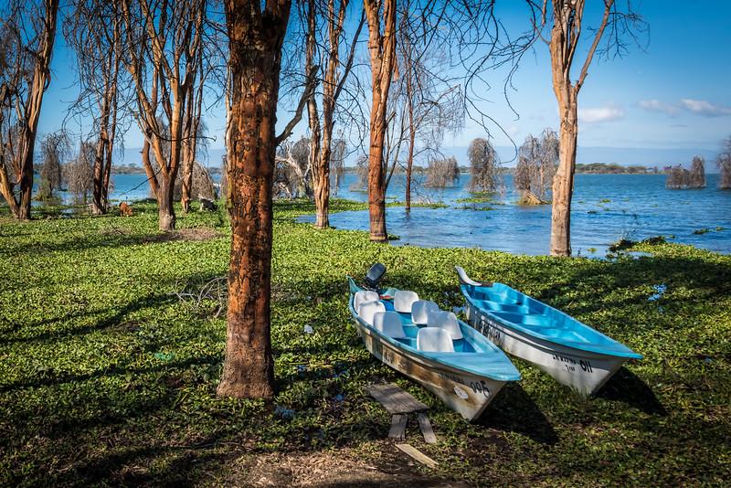 Boats - Lake Haivasha