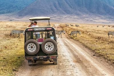 Tourists watching zebras in Ngorongoro crater, Tanzania