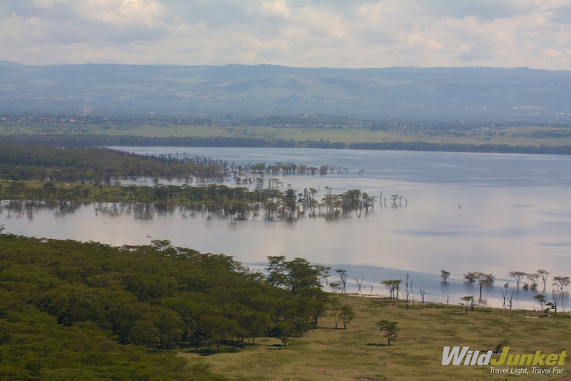 Lake Nakuru from above
