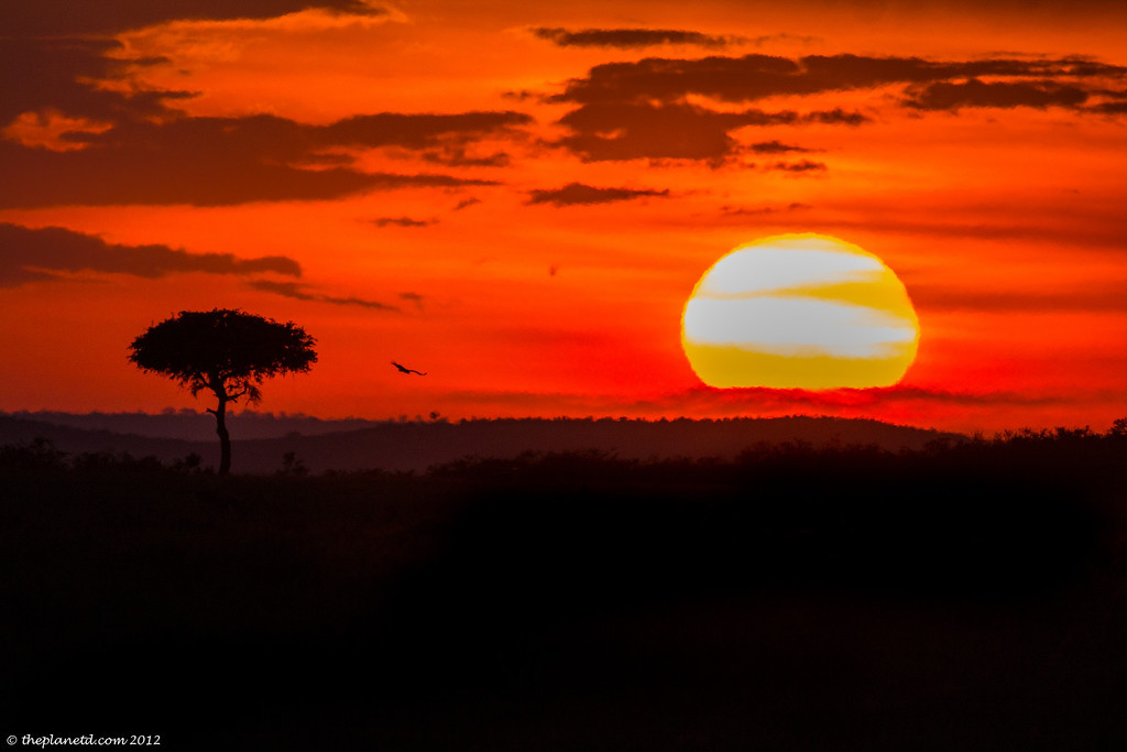 Sunset takes hold in the Masai Mara