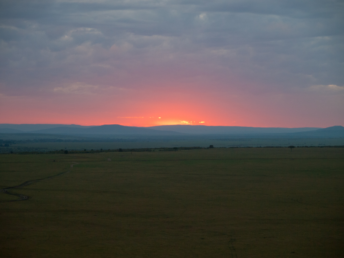 Balloon trip over the Masai Mara.  One of the best mornings of my entire life!