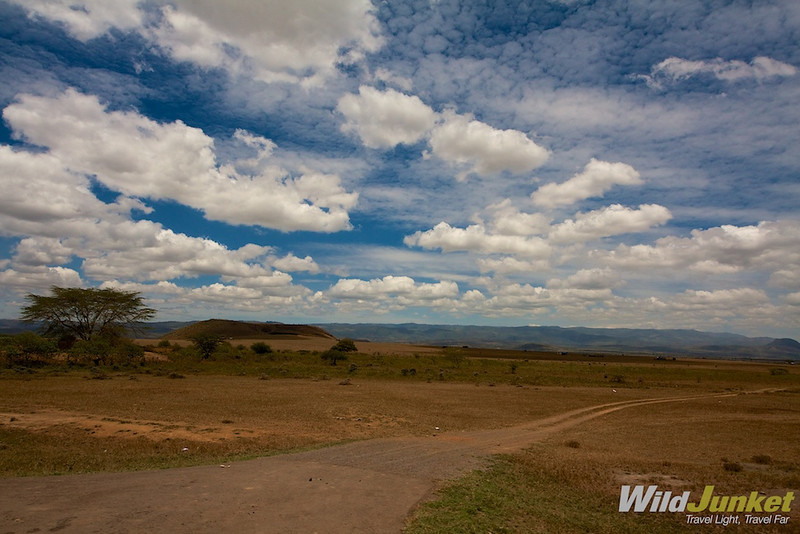 The roads of Masai Mara