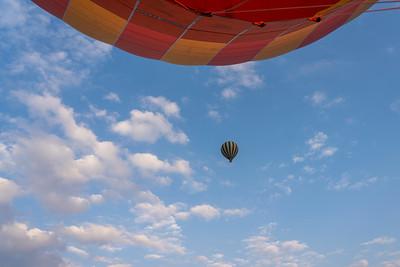 Hot air balloons in the Maasai Mara