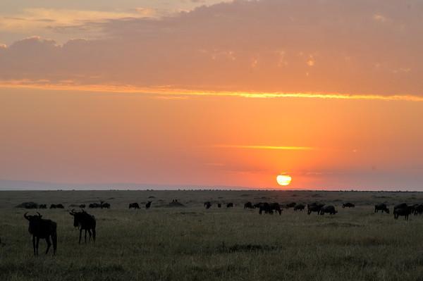 Sunrise on the Mara.