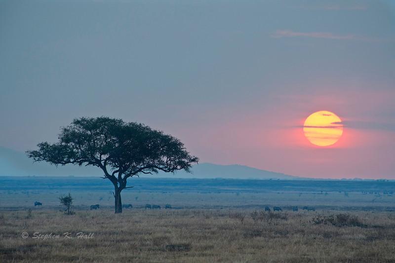 Sunset, Western Corridor, Serengeti National Park, Tanzania
