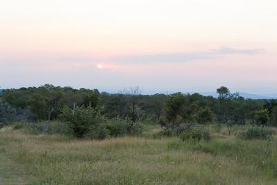 Evening sun over the park