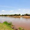 Mara River 2