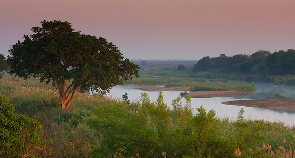 the Sabie River at Dawn