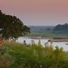 the Sabie River at Dawn