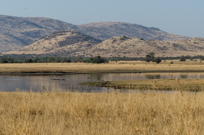 Our first stop was a return visit to Pilanesberg NP west of Pretoria,