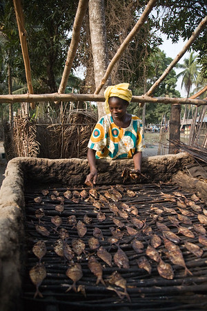Women smoke drying fish in Sierra Leonean fishing village of Sulima