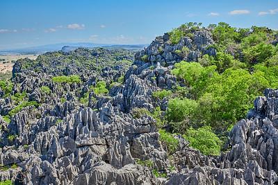 Ankarana Tsingy