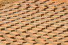 Patterns in the bricks drying in the sun before being fired