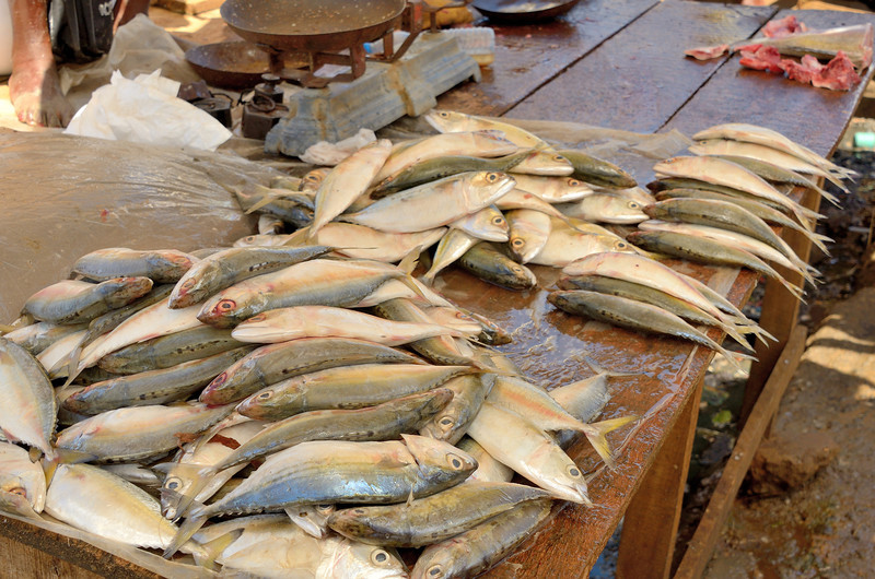 Fishmongers at Antsiranana Market