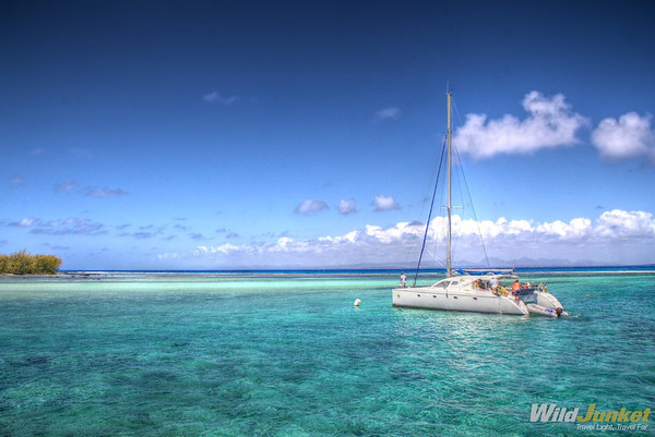 The catamaran from 20 Degres Sud