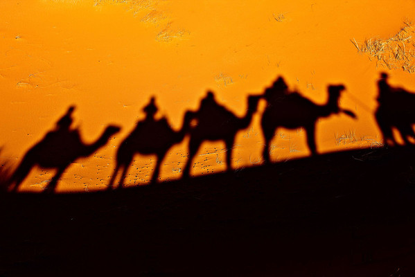 Our shadows follow us in the desert