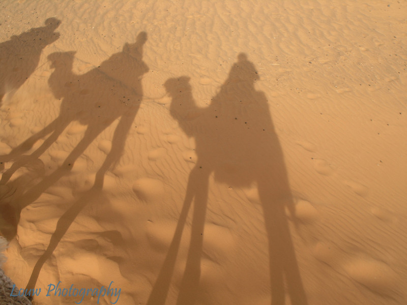 Us + Camel