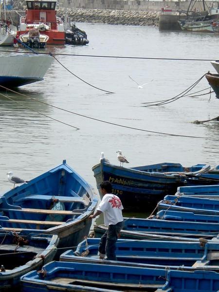 Boats in Essaouira, Morocco.