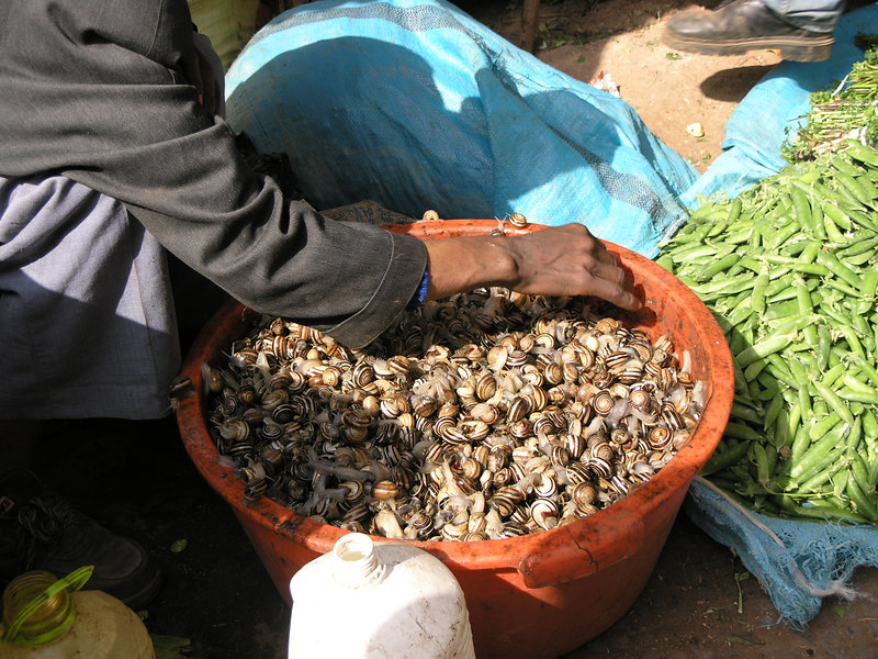 Snails at the market (which have to be knocked back into the basket every few minutes).