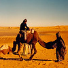 up for a camel ride?
