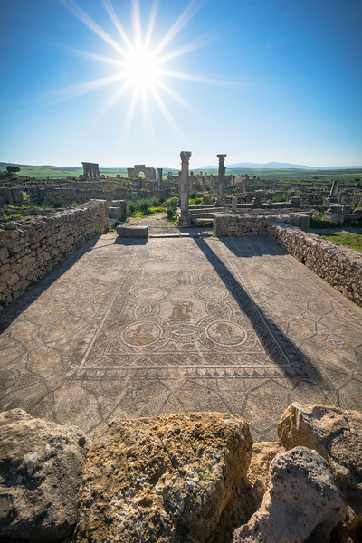 Volubilis Mosaic Floor