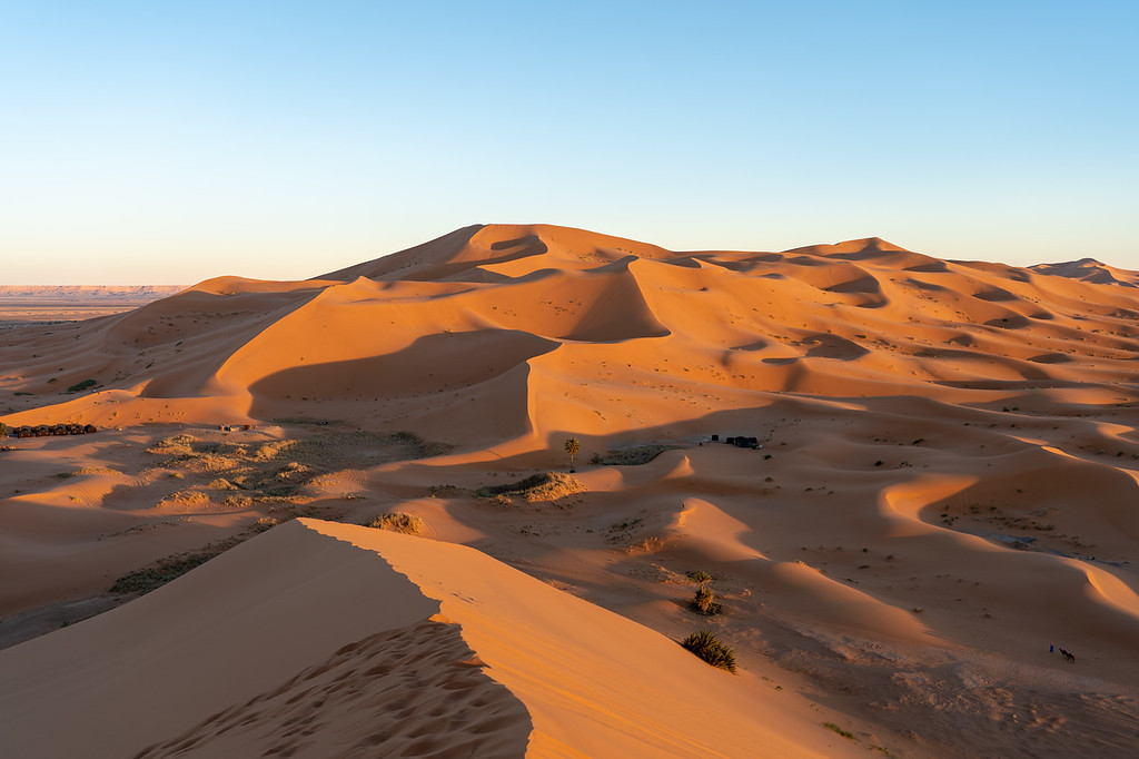 Sahara Desert dunes at sunset
