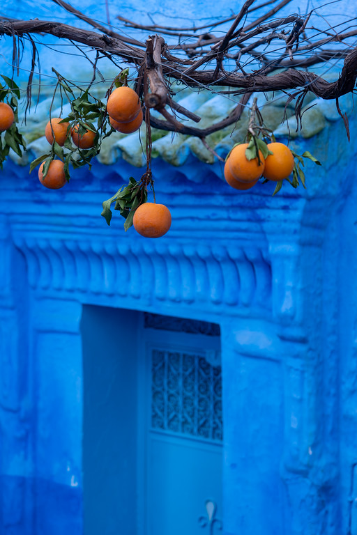 Oranges in Chefchaouen