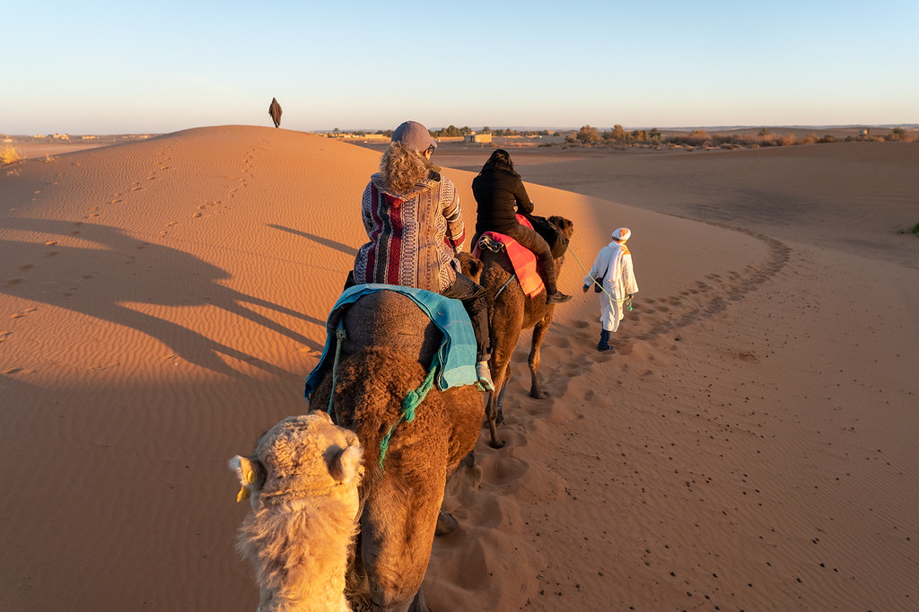 Riding camels at sunrise in Morocco