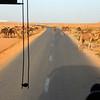 Camel highway