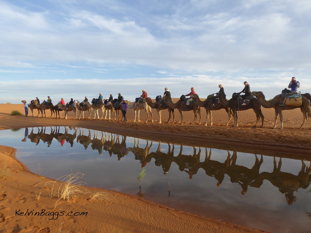 Sahara Desert camel ride & overnight camp