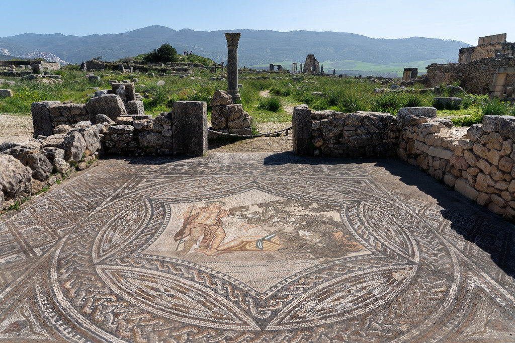 Mosaic in Volubilis