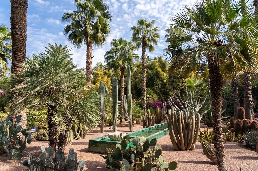 Villa Oasis garden