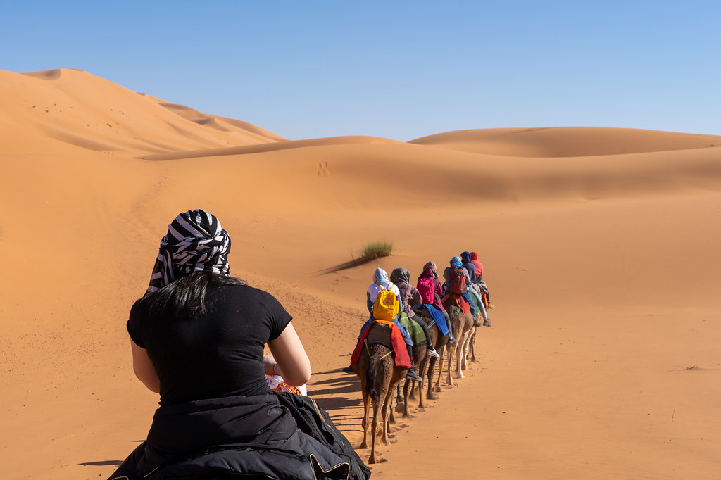 Camel train in the Sahara Desert