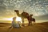 20181008KW-Camel_Train_Sunrise_Backlit