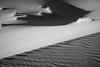 20170102_KW_LN_Dune_Grasses2