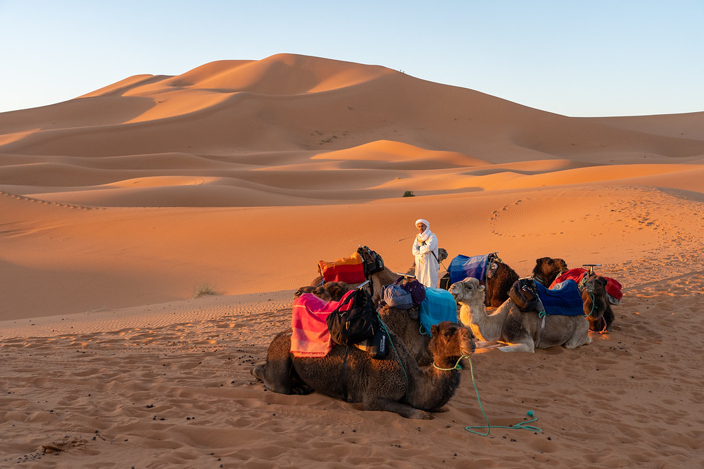 Sunrise in the Sahara Desert in Morocco