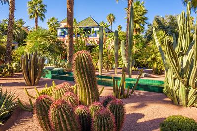 Botanical garden Jardin Majorelle in Marrakesh