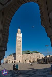 201911 - Casablanca-0016